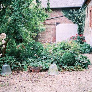 le_jardin_de_lily_paloma